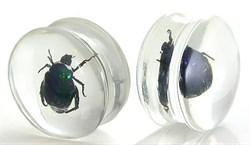Плаги - Акрил. Зеленый жук - фото 11677
