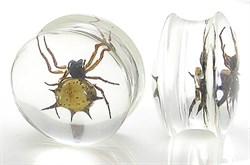 Плаги Акриловые - паук - фото 11679